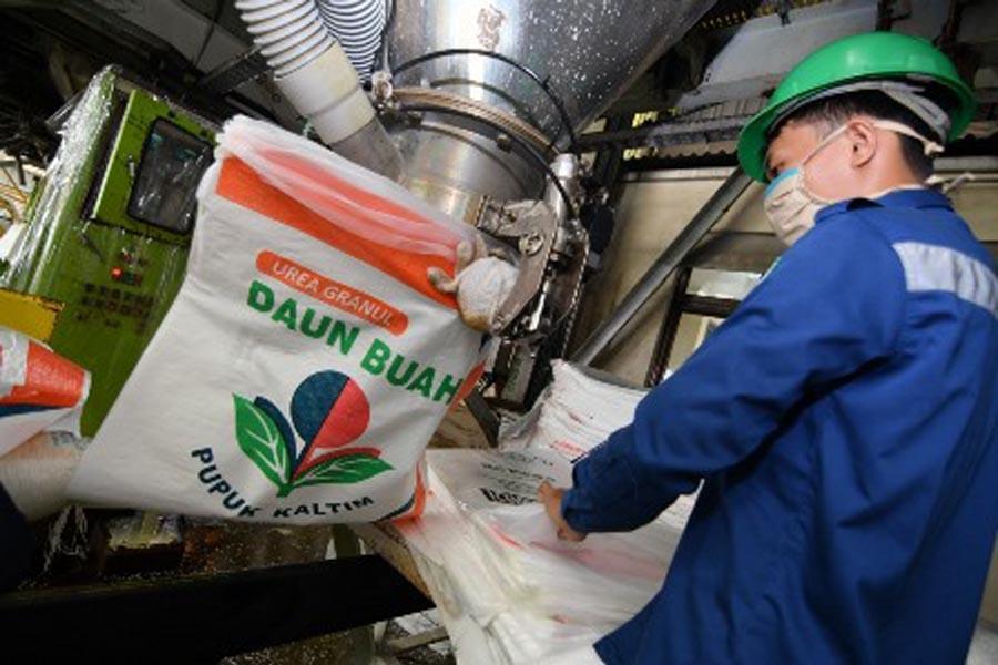 Pupuk Kaltim Kembangkan Teknologi Pertanian Kelapa Sawit