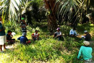 lewat-dukungan-dana-sawit-dari-bpdpks-4529-petani-peroleh-pelatihan