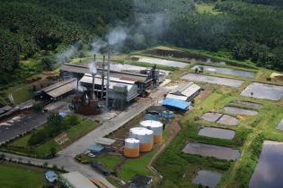 ekomoditi-indonesia-implementasikan-iot-dan-ai-di-pabrik-kelapa-sawit